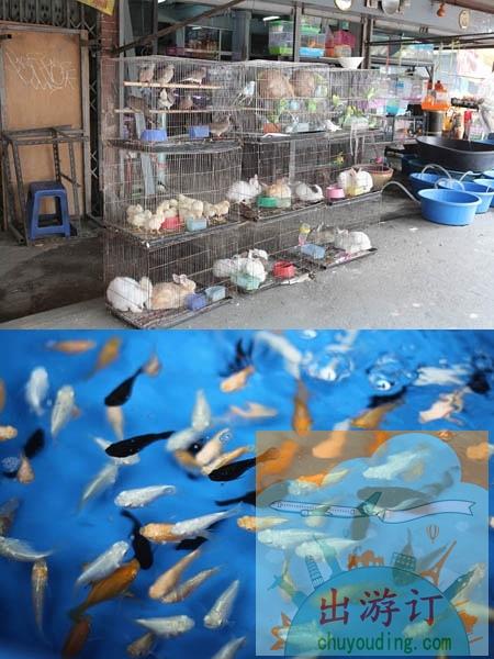 这是一个及其不客观的泰国深度逛吃逛吃攻略贴(曼谷篇完)