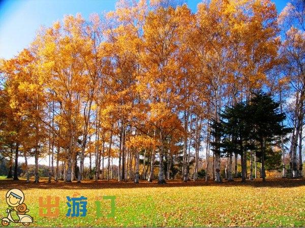 日本札幌Sapporo旅游攻略:札幌熱門景點行程/交通/住宿/美食推薦預定